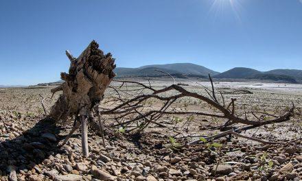 COAG pide financiación urgente para profesionales afectados por la sequía