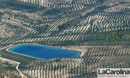 Andalucía convoca el Curso Superior de Especialización en Olivicultura, de reconocido prestigio internacional