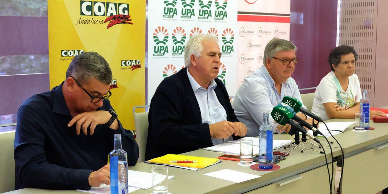 COAG Y UPA animan al sector a acudir a la #GranManifestación9J en Sevilla por la crisis de precios del aceite de oliva