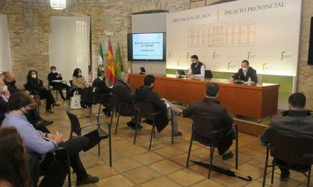 La Diputación analiza con la asociación TurJaén la estrategia de promoción turística de la provincia para 2021