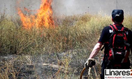Andalucía extrema las medidas de vigilancia en parques nacionales y espacios naturales protegidos ante el riesgo de incendios